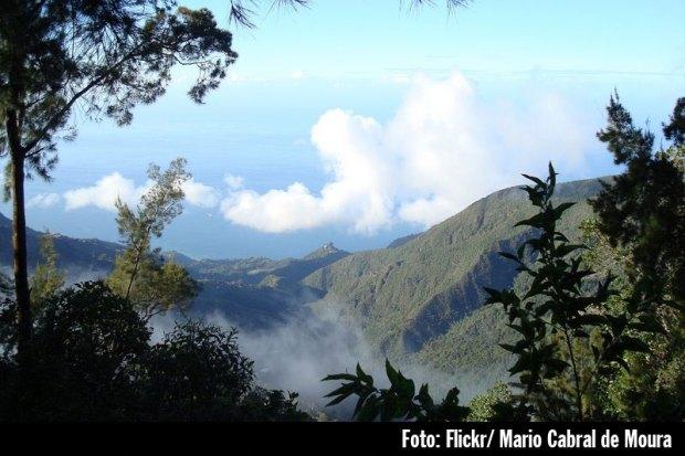 Monte Ávila Caracas