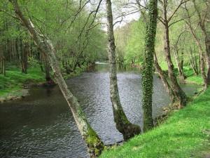 Río Eo Asturias