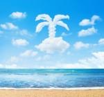 Vacaciones Halconviajes.com